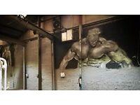 #Digital design/#Graffiti Art /#Airbrush Art /#Spray Art ........Professional artist