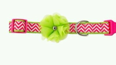 MARTHA STEWART PETS FASHION ALLIE CHEVRON ADJUSTABLE DOG GIRL COLLAR SZ XL