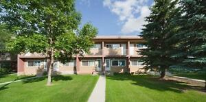 Family Friendly Townhomes in Capilano! Edmonton Edmonton Area image 8