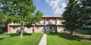 RENT A 3 BEDROOM FOR THE PRICE OF 2 - Near Shopping &... Edmonton Edmonton Area image 8