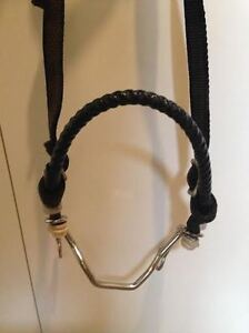 Hackamore + one ear nylon bridle