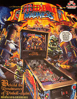 MEDIEVAL MADNESS LE PINBALL