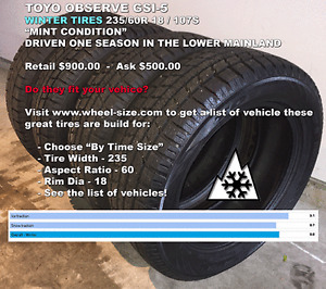 Mint 18 Inch Winter Tires