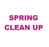 Spring Yard Clean Up Tree and Brush Removal Service