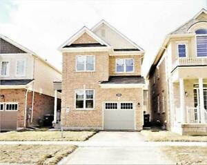 *8 Months old* 4 Bedroom house for sale in Brampton