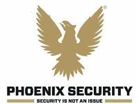 Security Systems Engineer