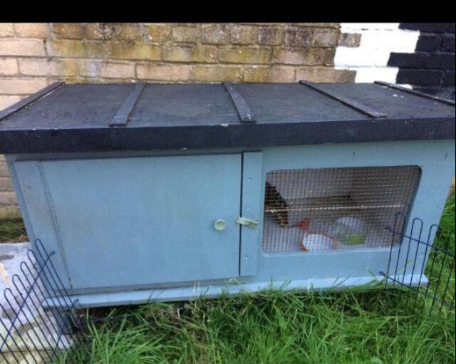 Wooden rabbit guinea pig hutch cage with wire run | in Newcastle ...
