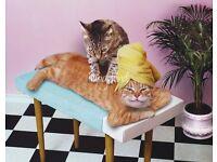 Revitalising Massage by English Sadie!