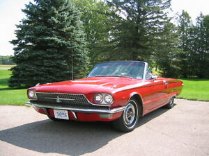 1966 Thunderbird Convertible~Excellent~LOST STORAGE MUST SELL