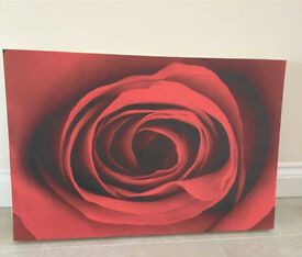 Red Rose Canvas Picture