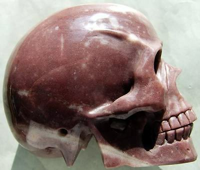 "6.0"" Purple AVENTURINE Skeleton, Crystal Healing SKULL"