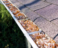 Eavestrough/Gutter cleaning