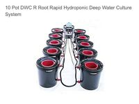 10 Pot DWC R Root Rapid Hydroponic Deep Water Culture System