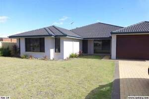 MODERN HOUSE 1 week FREE!! Atwell Cockburn Area Preview
