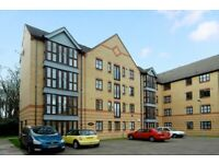 ## Beautiful 1 Bed Flat with Living Room - Mile End/Bow - DSS ACCEPTED