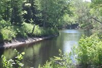 23.5 Acres Vacant Treed Acreage with a Trailer and River Front