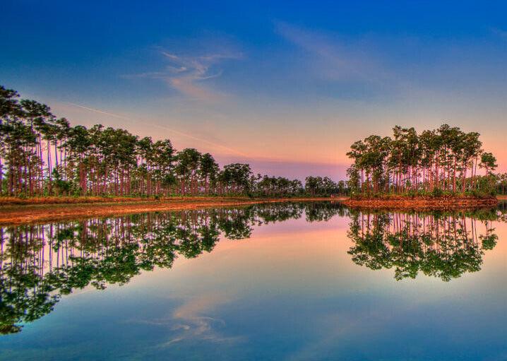 5 AC WATERVIEW, by Lake Mattie, near Lakeland,close to Disney,FL/Pre-Foreclosure