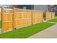 Handy man. Stud walls, flat pack furniture, shed errection, fencing.