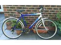 Reflex hybrid bike