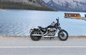 Harley Davidson Sportster/Nightster
