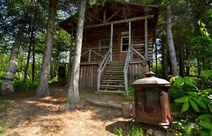 Cherche une petite maison, chalet hivernisé ou logement CAMPAGNE
