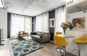 New, luminous downtown furnished Condo w/ park view - Jan 2019