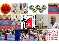 Free Shotokan Karate Lessons - The Newest Olympic Sport