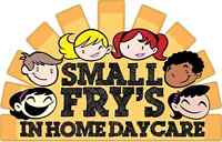 Small Fry's In Home Childcare