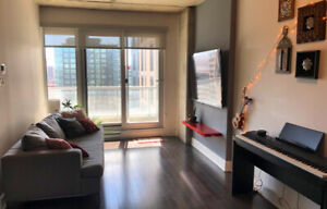 3 1/2 Griffintown Apartment for Rent