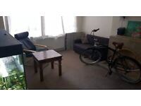 Two Bedroom Flat Canning Town