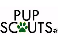Pup Scouts Dog Walking Service