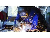 Professional welder required immediate start available