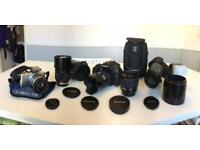 Olympus SLR/ PEN /OM collection