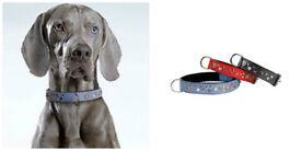 FABULOUS JOB LOT OF QUALITY DOG COLLARS & LEADS