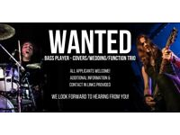 BASS PLAYER WANTED - For Covers/Function/Wedding Trio