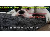 Can Dirty Carpets Make Me Sick? Yes dirty carpets can make you sick!
