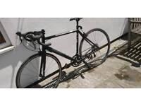 Marin A6 Argenta Road Bike