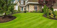 Lawn Care Sw/Nw- Weekly/Bi-Weekly Mowing And Trimming