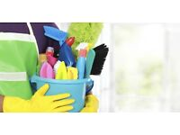 Experienced cleaner from just £8 an hour!