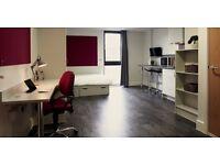 1 bedroom/Studio/Apartment/Student accommodation rent, £155 pw inclusive bills, 5 mins walk Uni.