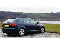 Audi A3 2.0 TDI, Fresh MOT/Service, Bose/Pioneer stereo, Parking Sensors, Great condition