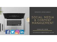 Freelance Content Writer and Social Media Manager