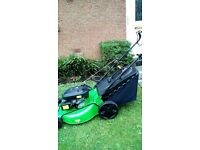 Grass cutting / hedge trimming/ garden handyman in Livingston