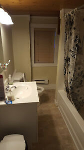 Centrally Located 2-Bedroom Townhouse - Available Feb 1 St. John's Newfoundland image 3