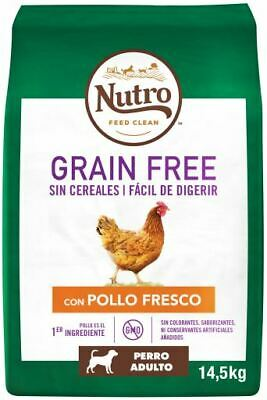 Nutro Dog Dry Grain Free Adult Medium Dog Food With Lamb 5.6KG Out Of Date