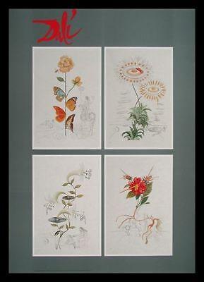 Salvador Dali Tausend Traeume 4 Blumen Poster Kunstdruck im Alu Rahmen 84x59cm