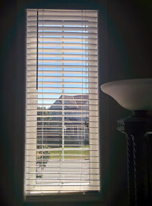 White faux-wood horizontal blinds