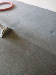 Carpet, Upholstery and Tile Cleaning