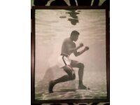 Mohammad Ali Mahogany Wall Prints
