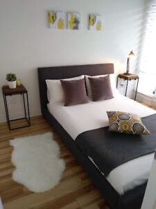 3 1/2 Griffintown Brand new condo fully furnished never lived in